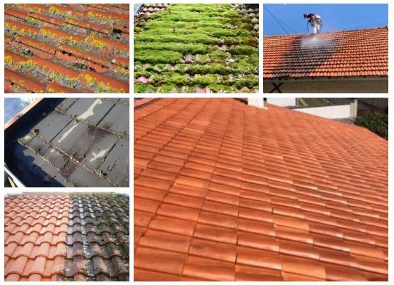 toitures dégradées nettoyées