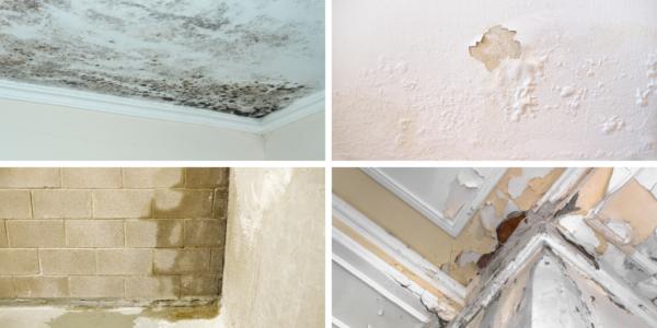 humidité des murs de la maison