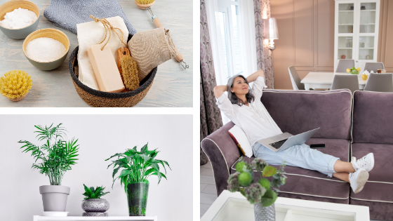 quelques solutions pour vous aider à assainir l'air de votre maison